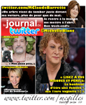 Journal de Twitter 32