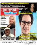 Journal de Twitter 33